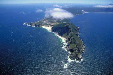 cape-peninsula-half-day